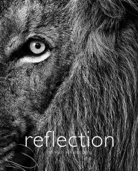 A. Coffee Table Africa - Pictorial - Reflection