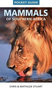 A. D. Small Africa Gift Book - Mammals of South Africa